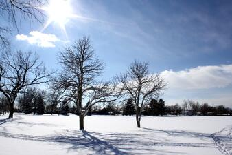 Image result for sunny winter day